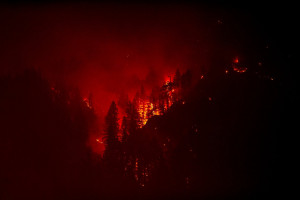 Eagle Creek Fire