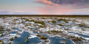 Frozen peatlands