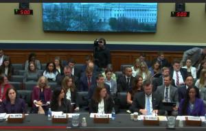 Witness Panel