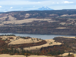 view from Tom McCall Point
