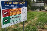 Portland Harbor fish advisory