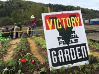 zenith victory garden spring 2019